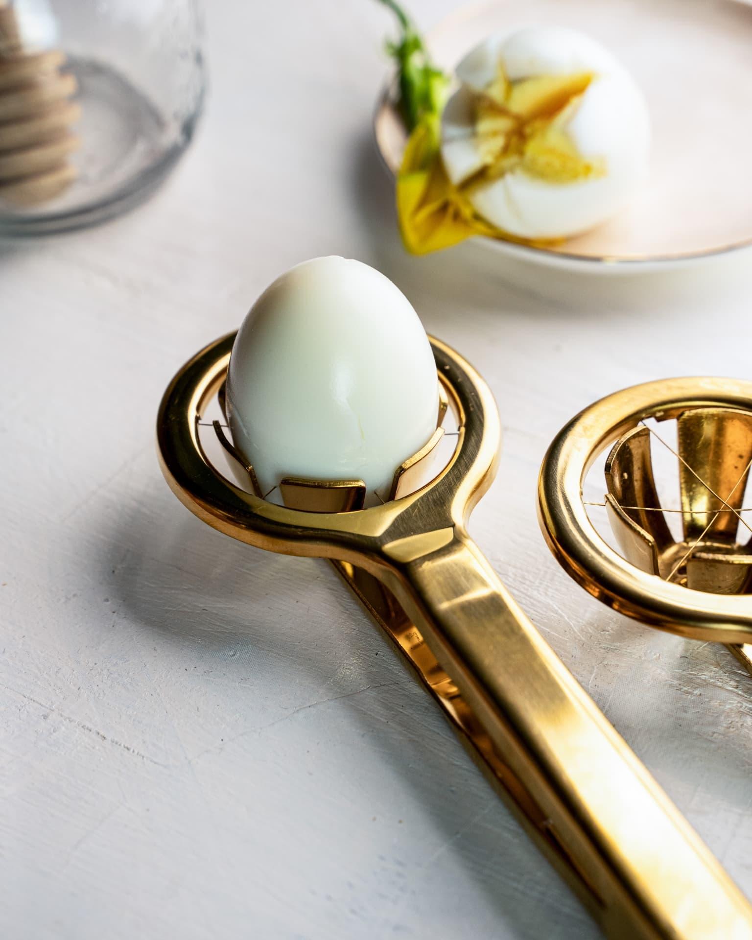 Viola OneQuest Egg Tool